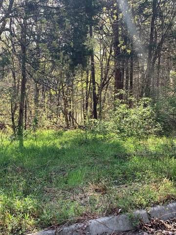 975 County Road 316, Niota, TN 37826 (#20211923) :: Billy Houston Group