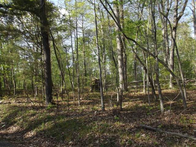 Lot 186 Scenic Lakeview Drive, Spring City, TN 37381 (MLS #20212295) :: Austin Sizemore Team