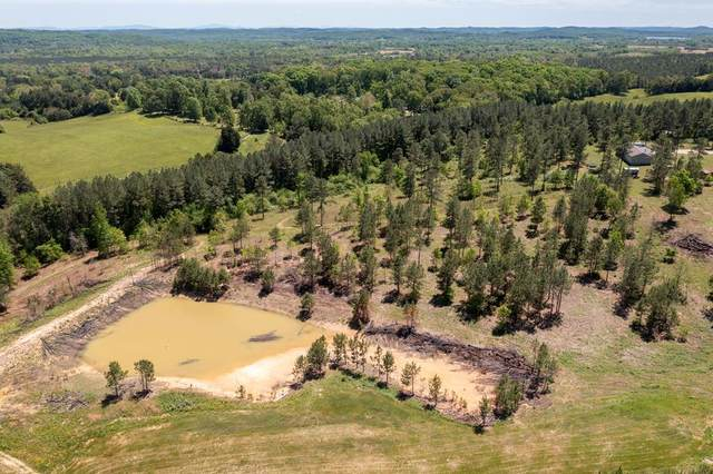 10 acres Tom Garrison, Evensville, TN 37332 (MLS #20212681) :: Austin Sizemore Team