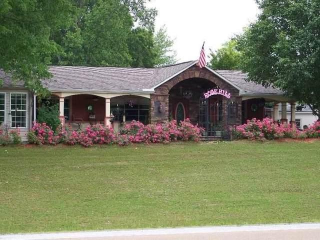 566 Mcgoffin Avenue, Spring City, TN 37381 (MLS #20213052) :: The Mark Hite Team