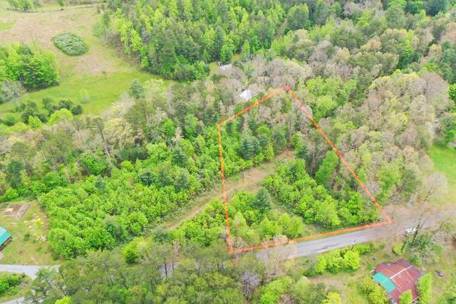 315 Epperson Road, Tellico Plains, TN 37385 (#20213655) :: Billy Houston Group