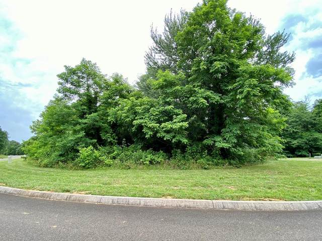 Lot 81 Falcon Trail, Vonore, TN 37885 (#20213725) :: Billy Houston Group