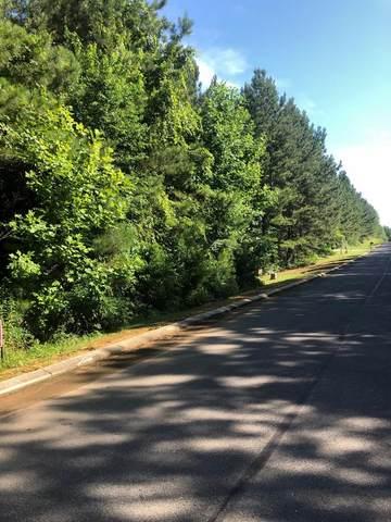143 White Water Run Lane, Ocoee, TN 37361 (MLS #20213831) :: The Jooma Team