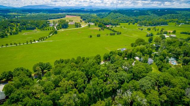 0 Mouse Creek Road Nw, Cleveland, TN 37312 (#20214234) :: Billy Houston Group