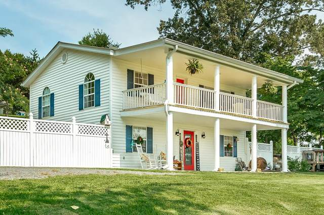 1110 Scenic Lakeview Drive, Spring City, TN 37381 (MLS #20214530) :: The Jooma Team