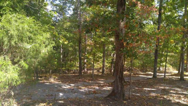 lots 209 & 2 Maple Drive, Spring City, TN 37381 (#20166223) :: Billy Houston Group
