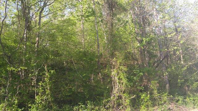 Lot 75 Ashley Lane, Dayton, TN 37321 (MLS #20182423) :: The Edrington Team