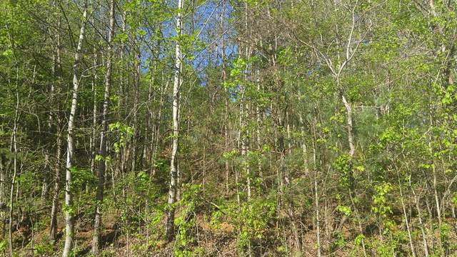 Lot 73 Ashley Lane, Dayton, TN 37321 (MLS #20182427) :: The Edrington Team