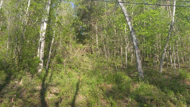 Lot 72 Ashley Lane, Dayton, TN 37321 (MLS #20182428) :: The Edrington Team