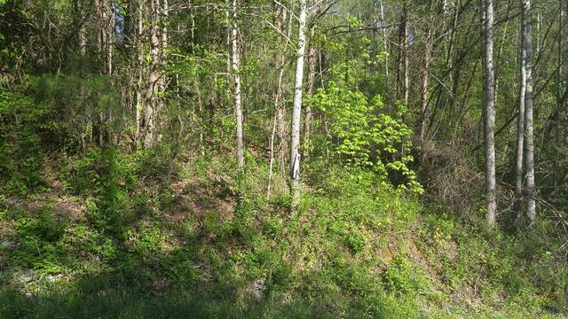 Lot 71 Ashley Lane, Dayton, TN 37321 (MLS #20182436) :: The Edrington Team
