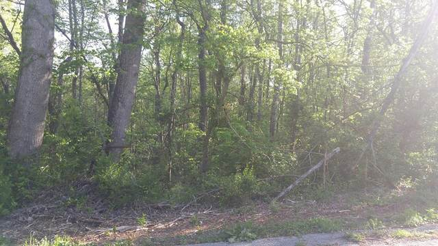 Lot 45 Ashley Lane, Dayton, TN 37321 (MLS #20182439) :: The Edrington Team