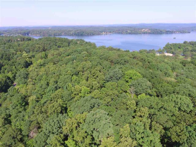 Lot 30 Deleware Point, Ten Mile, TN 37880 (#20183348) :: Billy Houston Group