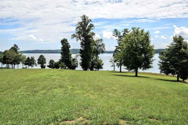 lot 34 Waterfront Way, Spring City, TN 37381 (#20183922) :: Billy Houston Group