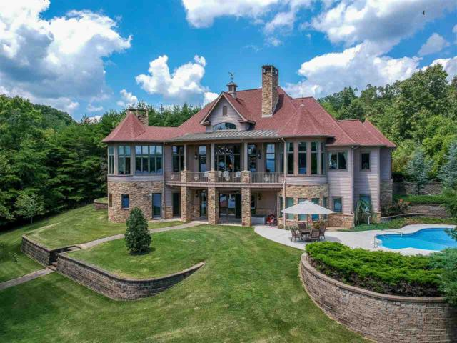676 Sherwood Shores Drive, Spring City, TN 37381 (#20184297) :: Billy Houston Group