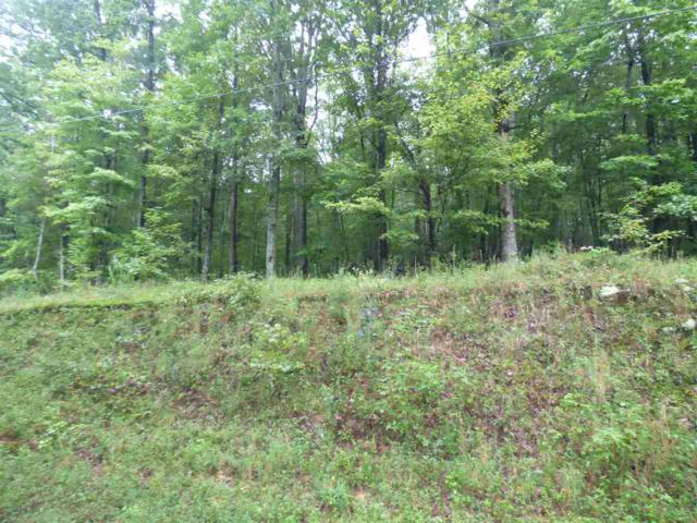 Lot #695 Rockview Drive, Spring City, TN 37381 (MLS #20184909) :: The Mark Hite Team
