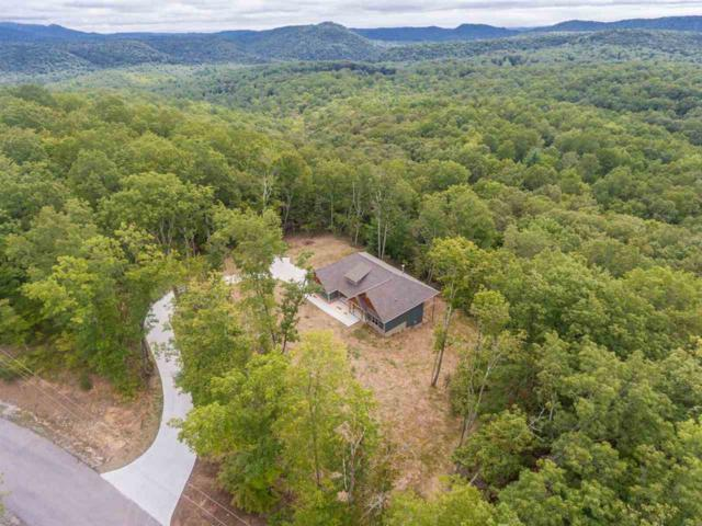 157 Countrywood Place, Harriman, TN 37748 (#20185642) :: Billy Houston Group