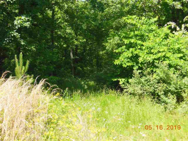 1162 Red Cloud Rd, Ten Mile, TN 37880 (MLS #20192833) :: The Edrington Team
