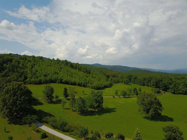 Harve Lewis Rd 100 Acres, Pikeville, TN 37367 (MLS #20194030) :: The Mark Hite Team