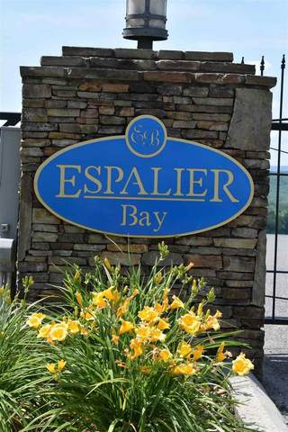 Lot 20 Espalier Drive, Decatur, TN 37322 (#20194803) :: Billy Houston Group