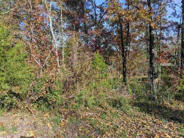 392 Arbor Pointe Trail, Dayton, TN 37321 (MLS #20196664) :: The Edrington Team