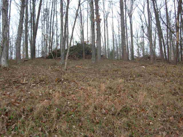 Lot 28 County Road 26, Calhoun, TN 37309 (MLS #20197170) :: Austin Sizemore Team