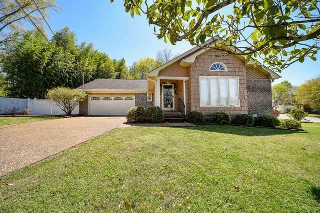 7750 Pinewood Drive, Chattanooga, TN 37421 (#20201725) :: Billy Houston Group
