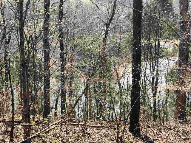 725 Shipley Farm Ln, Sale Creek, TN 37373 (#20201735) :: Billy Houston Group