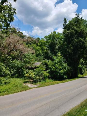 251 Blueberry Hill Rd, Dayton, TN 37321 (#20206564) :: Billy Houston Group