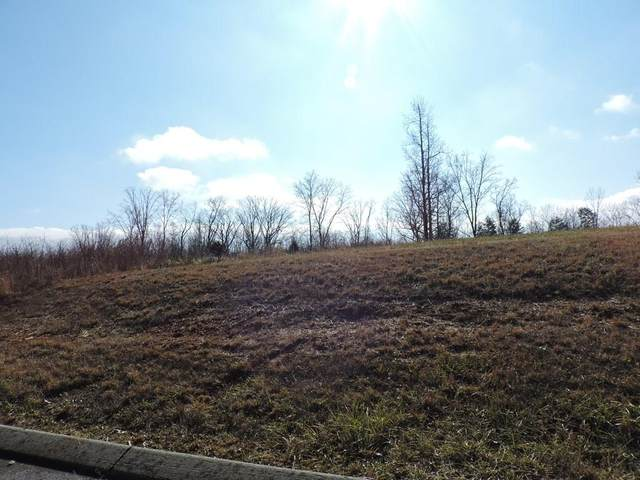 # 63 Hidden Forest Trail, Spring City, TN 37381 (#20210290) :: Billy Houston Group