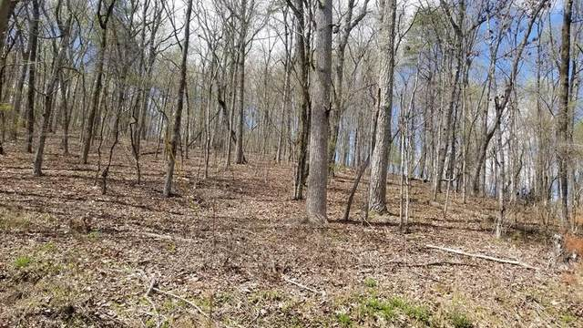 8.43 Acres Spruce, Willow & Maple, Spring City, TN 37381 (MLS #20212078) :: The Jooma Team