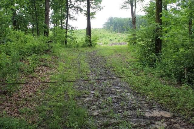 30 acres Old Federal Road, Ocoee, TN 37361 (#20212312) :: Billy Houston Group