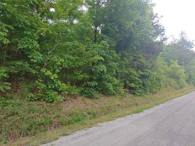 1610 Redman Lane, Decatur, TN 37322 (MLS #20213101) :: The Mark Hite Team