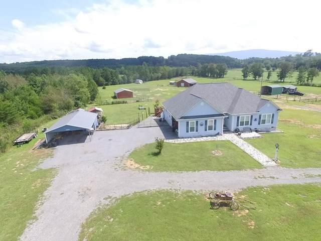 166 Friendship Church Road, Delano, TN 37325 (#20214740) :: Billy Houston Group