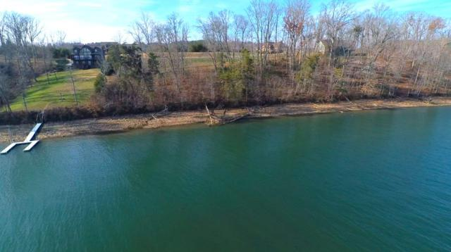 15981 Channel Pointe Drive, Sale Creek, TN 37373 (MLS #20176805) :: The Mark Hite Team