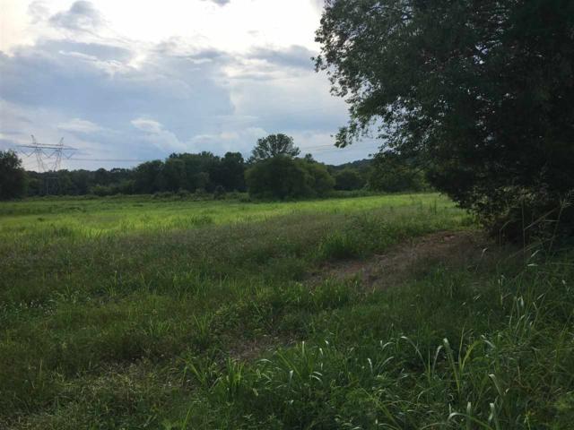 County Road 58, Riceville, TN 37370 (MLS #20194207) :: The Mark Hite Team