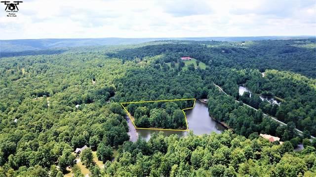 539 Two Lake Trail, Dunlap, TN 37327 (#20205774) :: Billy Houston Group