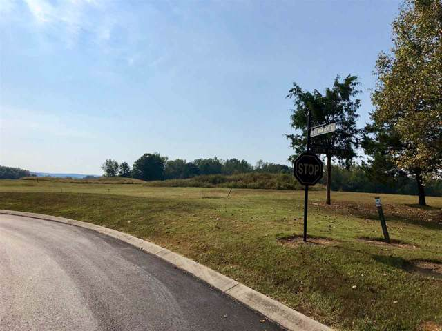 Lot 125 Black Bear Cove, Englewood, TN 37329 (#20160917) :: Billy Houston Group