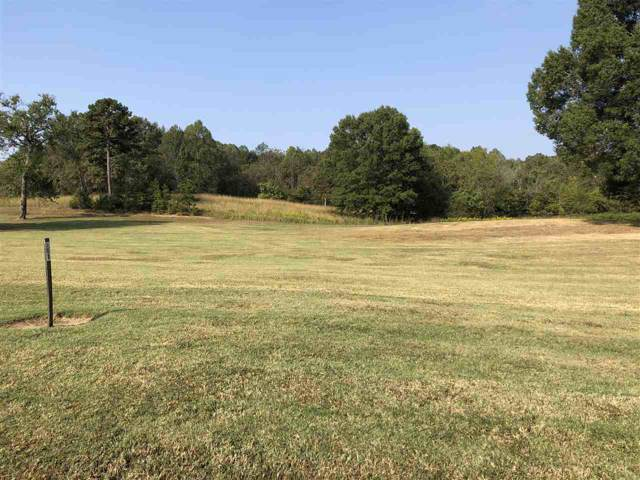 Lot 8R Zion Cove Lane, Englewood, TN 37329 (#20161021) :: Billy Houston Group