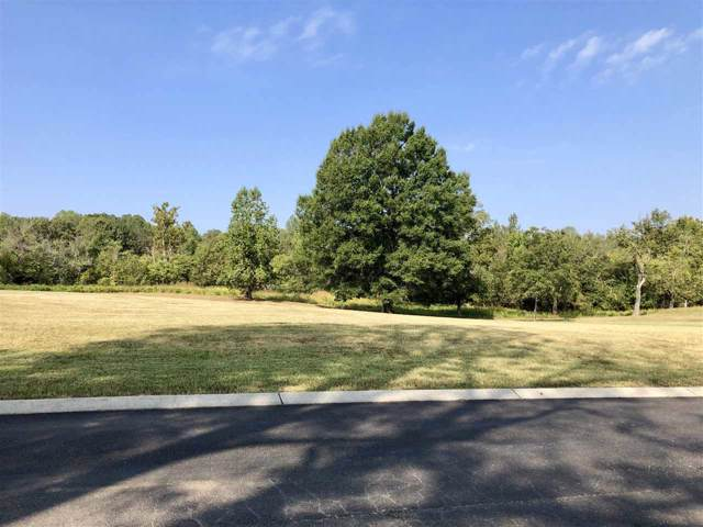 Lot 6R Zion Cove Lane, Englewood, TN 37329 (#20161020) :: Billy Houston Group