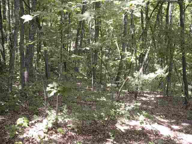Pt of Lot 1 Trotter Road, Grandview, TN 37337 (#143669) :: Billy Houston Group