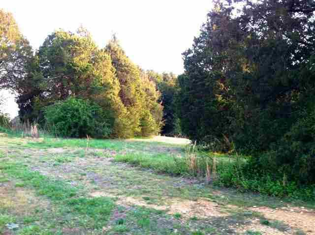 Lot 48 County Road 7030, Athens, TN 37303 (#20131790) :: Billy Houston Group