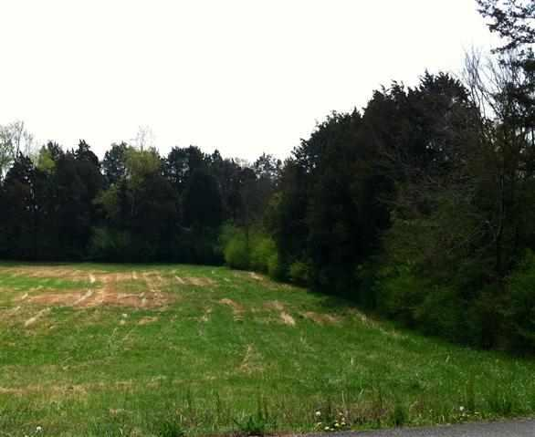 Lot 5 County Road 703, Athens, TN 37303 (#20131806) :: Billy Houston Group