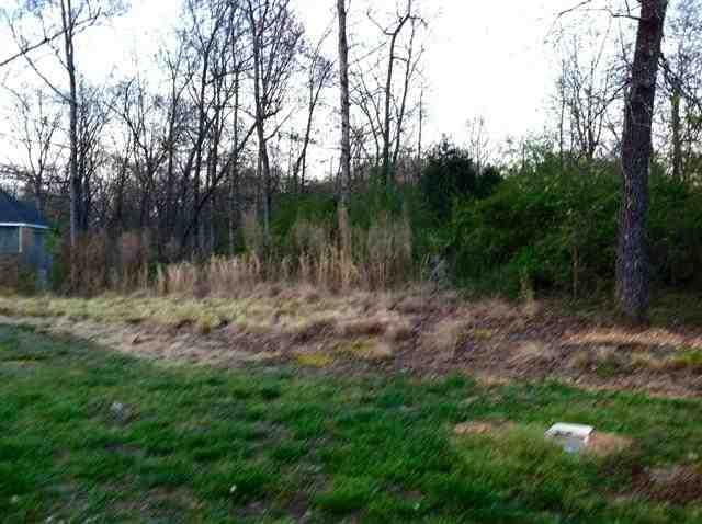 Lot 25 County Road 7030, Athens, TN 37303 (#20131845) :: Billy Houston Group