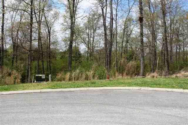 Lot 29 County Road 7030, Athens, TN 37303 (#20131847) :: Billy Houston Group