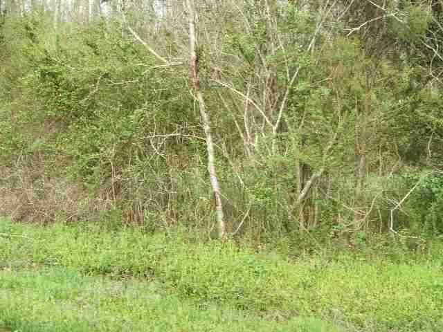 Lot #2 Smyrna Road, Evensville, TN 37332 (#20132353) :: Billy Houston Group