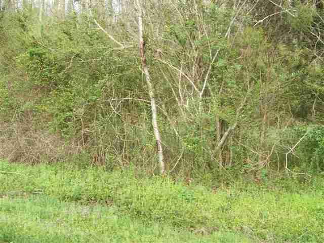 Lot #6 Smyrna Road, Evensville, TN 37332 (#20132357) :: Billy Houston Group