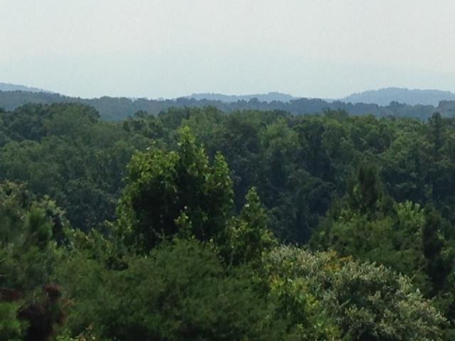 Lot 15 Walker Brow Ridge Road, Cleveland, TN 37312 (#20143296) :: Billy Houston Group