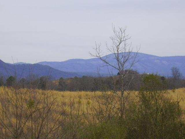 Lot 10 Majestic Mountain, Cleveland, TN 37323 (#20153339) :: Billy Houston Group