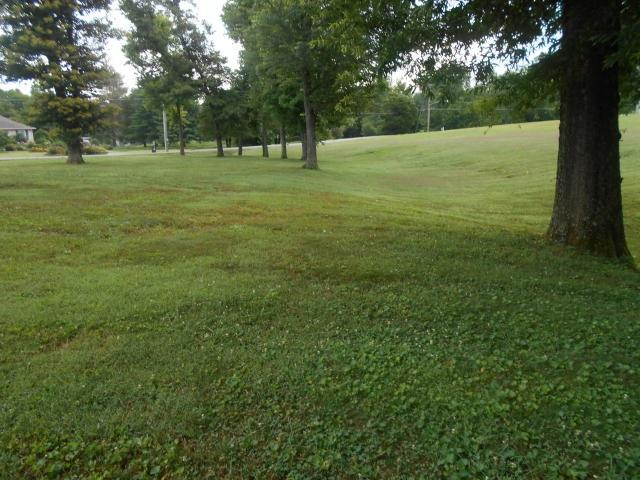 205 Fairlane, Sweetwater, TN 37874 (#20166605) :: Billy Houston Group