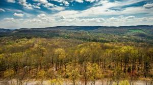 Lot #19 Green Ridge Trail, Harriman, TN 37748 (#20172075) :: Billy Houston Group